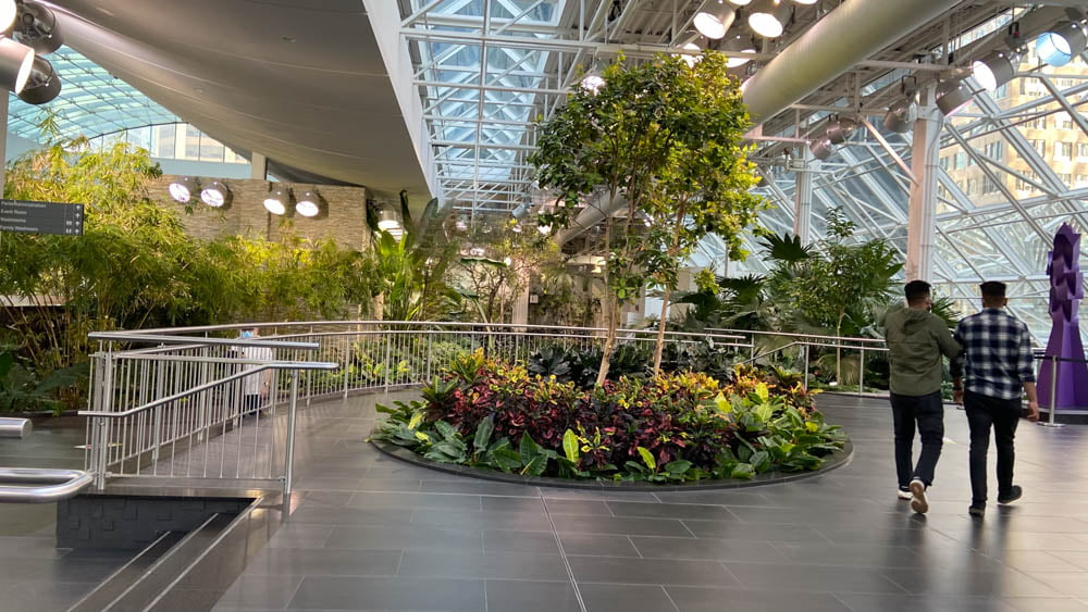 "Devonian Gardens on Level 4 at ""The Core"" in Calgary"
